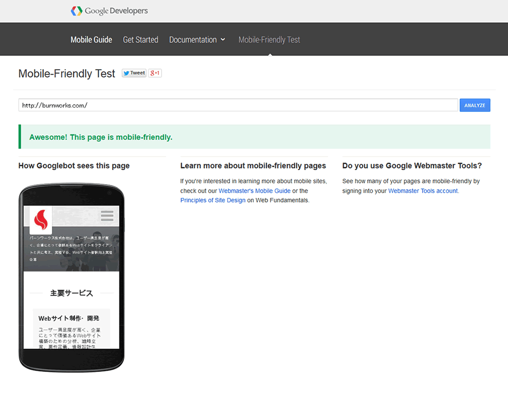Mobile-Friendly Test (モバイルフレンドリーテスト) の実行結果例